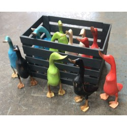 12 Painted Ducks in White Crate